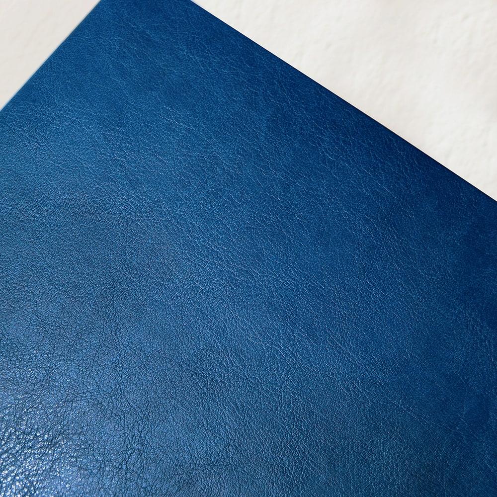 copertina-blu-particolare-tesilike