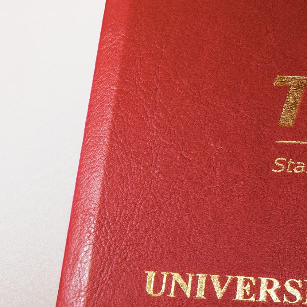 copertina-rossa-particolare-tesilike